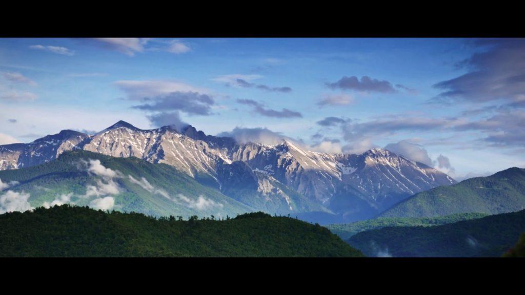 Φύση… Βουνό – τσάι του βουνού ΟΛΥΜΠΟΣ